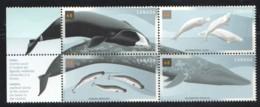 2000  Whales  Se-tenant Ock Of 4  Sc 1868-71  MNH - Neufs