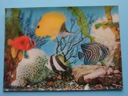 Aquarium ( Printing Studio AG / 3-D Color Dept. Zürich ) Anno 19?? ( Zie Foto ) ! - Poissons Et Crustacés