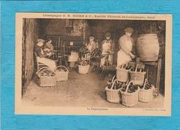 Champagne G H. Mumm & Cie, Société Vinicole De Champagne. - Le Dégorgement. - Reims