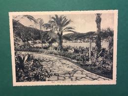 Cartolina Noli - Vista Dalla Villa Pisapia - 1938 - Non Classificati