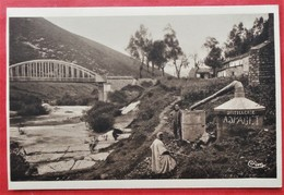 Cpa DJEBEL ABIOD Anime Le Pont Distillerie A.J. PAGET - Tunisia