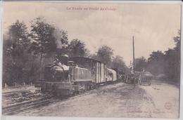 Crécy-en-Ponthieu (Somme) - Le Train En Forêt - Attelage - Gros Plan - Crecy En Ponthieu