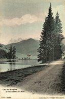 LAC DE MORGINS - Switzerland