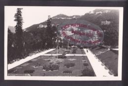 Q1525 - HONG KONG (?)  - Public Garden - China (Hong Kong)