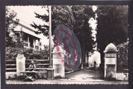 Q1535 - ALGERIE - Entrée Du Belvédère Saint Raphael - Algérie - Algiers