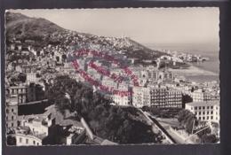 Q1538 - ALGERIE - Vue Générale De Bad El Oued Dominée Par Notre Dame D'Afrique - Algérie - Algiers