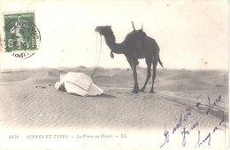 ALGERIE SCENES ET TYPES - LL 6158 - La Prière Au Désert - Animée - Belle - Scenes