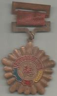 Cina, 1953, Ae. Smaltato Gr. 23, Cm. 4,5 X 7,5. - Gettoni E Medaglie