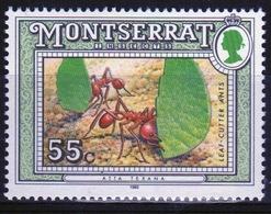 Montserrat 1992 Single 55c Commemorative Stamp From The Insect Set. - Montserrat