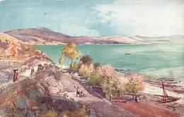 Pays Div -ref T275- Illustrateurs - Illustrateur Raphael Tuck S Postcard -the Holy Land -galilee - - Palestine