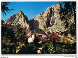 CIMA  SAPPADA  DI  CADORE (BL):   RIFUGIO  MONTE  SIERA  -  STAZIONE  D' ARRIVO  SEGGIOVIA  -  FG - Hotels & Restaurants