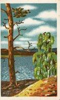 See Mit Baum Und Strauch Wolken 1942 Feldpost - Malerei & Gemälde