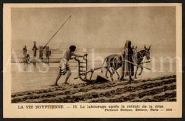 Postcard / CPA / Fernand Nathan / Unused / La Vie Egyptienne / Le Labourage Après Le Retrait De La Crue / 12 / 2042 - Histoire
