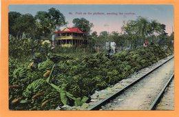 Costa Rica 1910 Postcard - Costa Rica