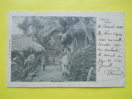 Ceylon ,Colombo ,1901,native Huts - Sri Lanka (Ceylon)