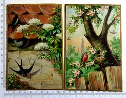 2 CHROMOS LITHOGRAPHIES GAUFREES..FORMAT CARTE POSTALE  ...NIDS D'OISEAUX....HIRONDELLE...ROUGE GORGE - Vieux Papiers
