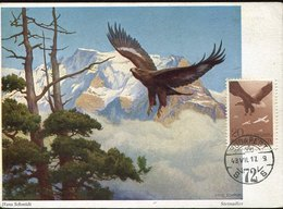 45006  HUNGARY Maximum 1948  Eagle,  Adler Aigle - Eagles & Birds Of Prey