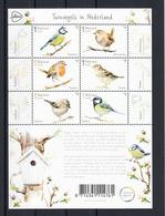 Nederland 2019 Nvph Nr ??, Mi Nr ??, Tuinvogels, Bird, In Nederland, Sheet, Koolmees, Goudhaan, Roodborst, Huismus, - Periode 2013-... (Willem-Alexander)