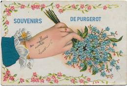 PURGEROT - France