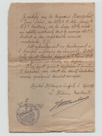 Lettre Manuscrite De Février 1919 Hôpital Militaire De Lunéville - Documents