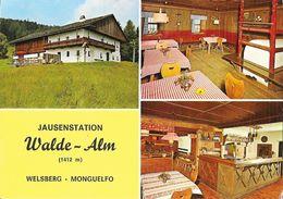 Jausenstation - Berggasthof Walde-alm - Welsberg Monguelfo Pustertal, Dolomiten Alto Adige - Restaurant - Hotels & Restaurants