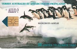 Télécarte TAAF FSAT - Manchots Adélie ... Pingouin Penguin Pinguin ... - TAAF - French Southern And Antarctic Lands