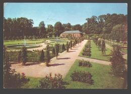 Le Roeulx - Château Des Princes De Croy - La Roseraie Et L'orangerie - 1979 - Le Roeulx
