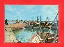 56-CPSM PORT LOUIS - Port Louis