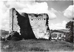 AUBUSSON  - Les Ruines Du Chapitre - Aubusson