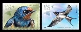 Estonia 2019 Mih. 953/54 Europa. National Birds. Fauna. Barn Swallows MNH ** - Estonia