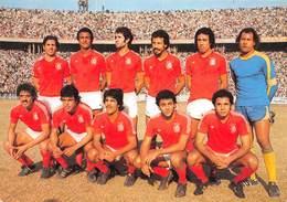 Tunisie - Equipe De Football - World Cup 1978 - Dhouib, Djebali, Gasmi, Akid, Kaabi, Attouga, Labidi, Agribi, Tarak... - Tunesien