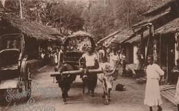 THE SEASONS From CEYLON   Village Cart.   Scan - Sri Lanka (Ceylon)