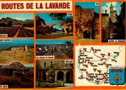 HAUTE PROVENCE...ROUTE DE LA LAVANDE ...CPM - Maps