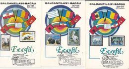79000- BACAU BALKAN PHILATELIC EXHIBITION, ENVIRONMENT PROTECTION, MAXIMUM CARD, 5X, 1991, ROMANIA - Environment & Climate Protection