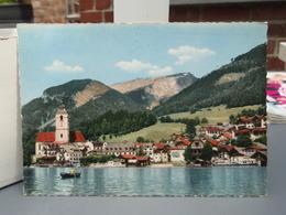 Cp ST. WOLFGANG Mit Schalberg Avec Tampon 1967 - St. Wolfgang