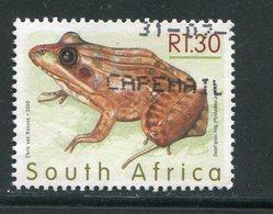 AFRIQUE DU SUD- Y&T N°1106- Oblitéré (grenouilles) - Oblitérés