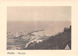 Tunisie - KELIBIA - Vue Générale Du Port - Exclusivité Epicerie Abdelhamid Tanabane - Tunisia