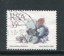 AFRIQUE DU SUD- Y&T N°669- Oblitéré (plantes Grasses) - Afrique Du Sud (1961-...)