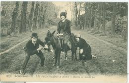 Robinson; Les Promenades à Anes. Martin Ne Marche Pas - Non Voyagé. (E.L.D.) - Le Plessis Robinson