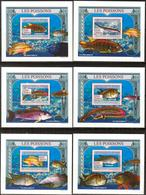 A{159} Guinea 2009 Fishes 6 S/S Deluxe MNH** - Guinea (1958-...)