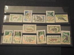 COTE D'IVOIRE - 1963/4 ANIMALI 13 VALORI - NUOVI(++) - Ivory Coast (1960-...)
