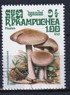 Kampuchea Single 1r00 Stamp From The 1985 Set Celebrating Fungi - Kampuchea