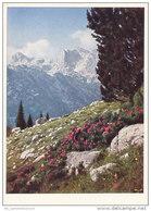 Berchtesgaden / Reiteralpe (D-A18) - Berchtesgaden