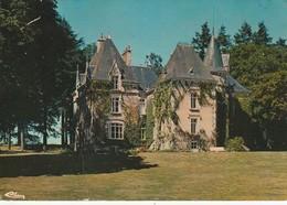 CERIZAY. - Le Château Du Puy-Genest. CPM - Cerizay