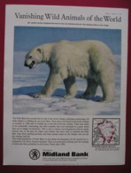 MIDLAND BANK -ORIGINAL 1966 MAGAZINE ADVERT. POLAR BEAR - Advertising