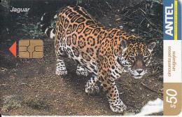 URUGUAY - Jaguar(272a), 03/03, Used - Uruguay