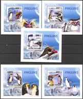 A{219} Guinea Bissau 2009 Birds Penguins 5 S/S Deluxe MNH** - Guinea-Bissau