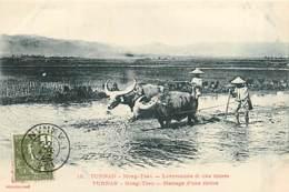 TONKIN   Yunnan  MONG-TZEU  Hersage Riziere          INDO,326 - Viêt-Nam