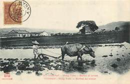 TONKIN   Yunnan  MONG-TZEU    Labour        INDO,327 - Viêt-Nam