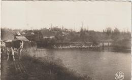 R: Manche : NEUILLY  La  FORET :   Lcs Vannes  De  Saint  Lambert  1960 , Vache - Other Municipalities